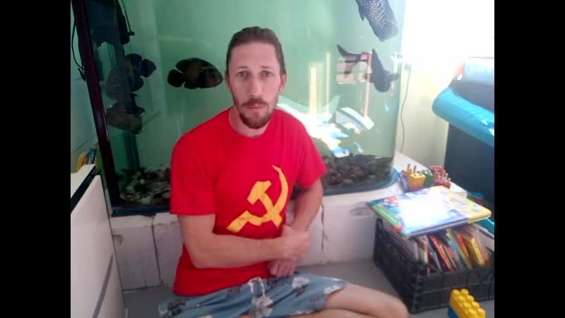 Александр Гайдаш, отзыв о курсе по ОС