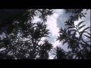 PIANETA TERRA, LA STORIA dalla nascita alla vita - Documentario ITA