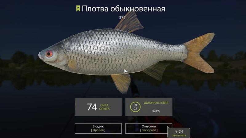 Обзор анонса обновления русской рыбалки 4