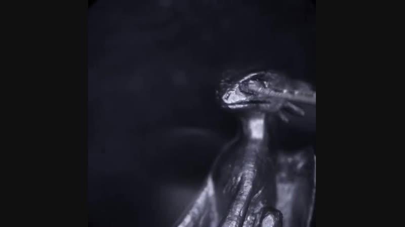 Беззубик на кончике карандаша (миниатюра на грифеле)