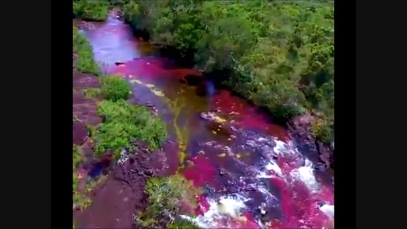 Rainbow River in Colombia
