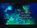 FK181031_-_Pescadero_Vent_Diving_~_4K_ROV_Dive_Highlights