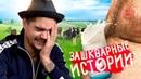 ЗАШКВАРНЫЕ ИСТОРИИ 5 Гланц Музыченко Поперечный Ильич и Джарахов