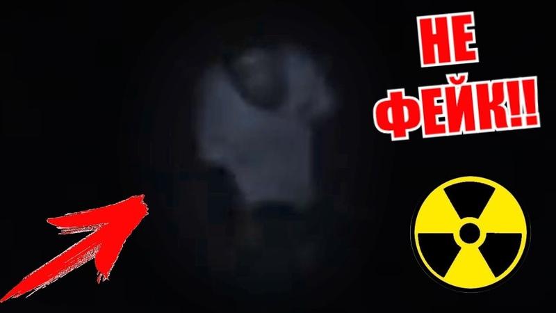 СТАЛК: Мутанты чернобыля 💀 ЗАХВАТЫВАЮТ ПРИПЯТЬ, РЕАЛЬНЫЕ КАДРЫ!