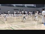 Японские дети репетируют ката