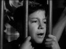 Соль Земли, 1953, Реж.: Герберт Дж. Биберман