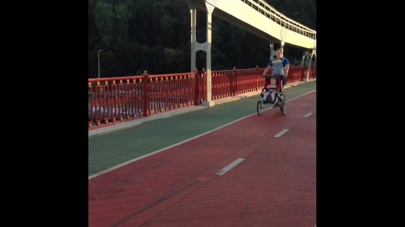 папавел Taga bike