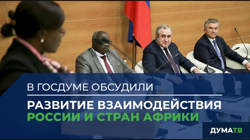 В Госдуме обсудили развитие взаимодействия России и стран Африки