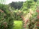 Gärtnerei im Himmelreich