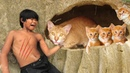 Primitive Technology: Found Six Wild Cat Lose Home In Cave And Bring Them To Their Mum - Cute Cat