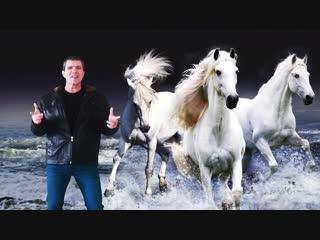 Владимир Дубровский - Три белых коня (Cover)