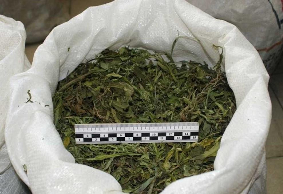 Выявили марихуану рамки для фото с коноплей