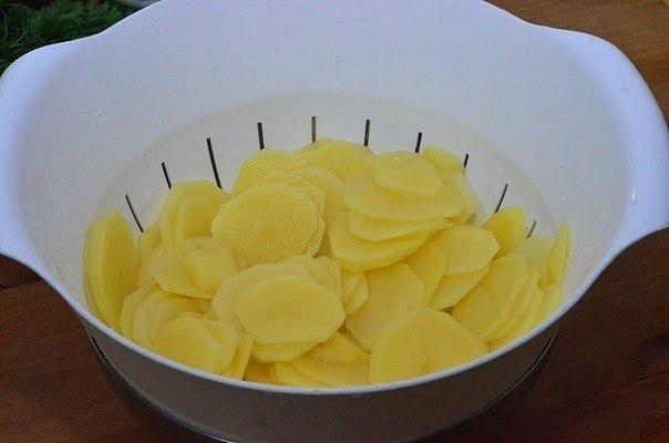 Готовим картошку с грибами в сливках!