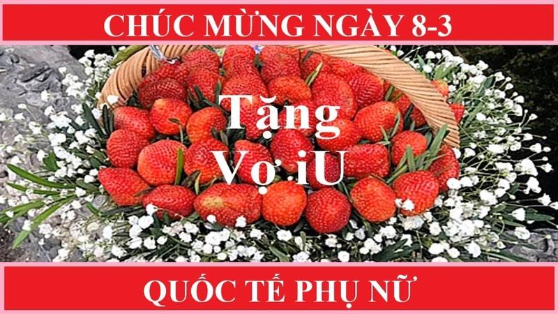 Women's Day Ngày Quốc Tế Phụ Nữ 8 3 Mua gì Tặng Gì Cho Quí Bà Bông Hồng Hay Socola