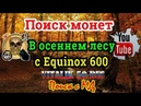 Поиск монет в осеннем лесу с Equinox 600. Search for coins in the autumn forest with Equinox 600