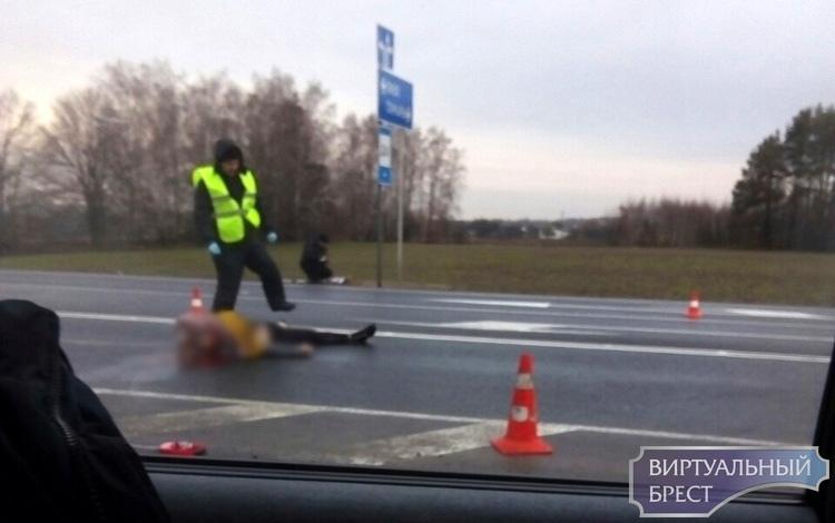 На трассе М10 под колёсами автомобиля погиб человек