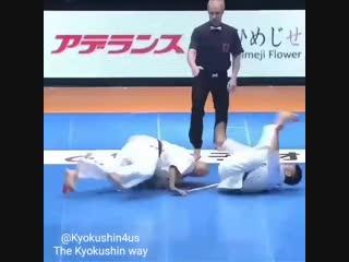 Мощнейшая нарезка Мощнейшая нарезка чётких нокаутов в Кёкусинкай карате. Подготовка бойца. https://vk.com/oyama_mas