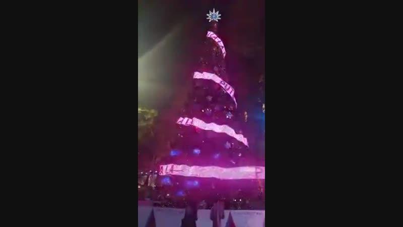 путін - xyйлo! Різдвяна ялинка в Сіднеї вітає всіх з наступаючим Новим Роком та Різдвом!
