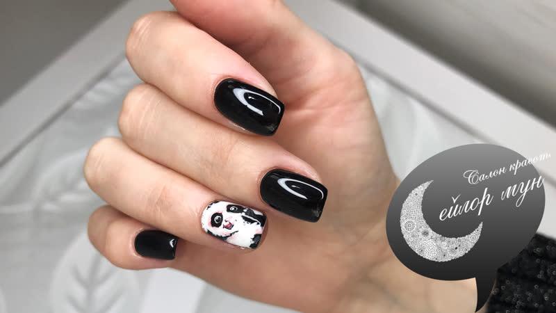 Дизайн панды и маникюр от команды Сейлор Мун