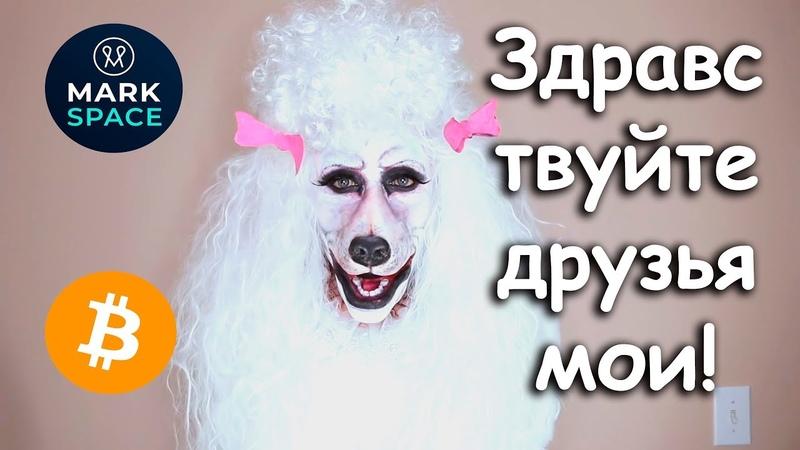 Шамов Дмитрий. КЕМ Я РАБОТАЮ