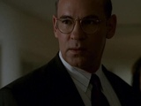 The X-Files Walter Skinner (Profile)