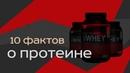 Протеин aka Белок (Πρώτη)