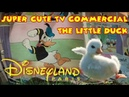 Adorable duckling Meets Donald Duck in Heartwarming Disneyland Paris Commercial