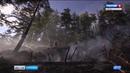 В республике Карелия зарегистрировано 23 действующих пожара