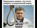 Моя судьба и выборы в Украине