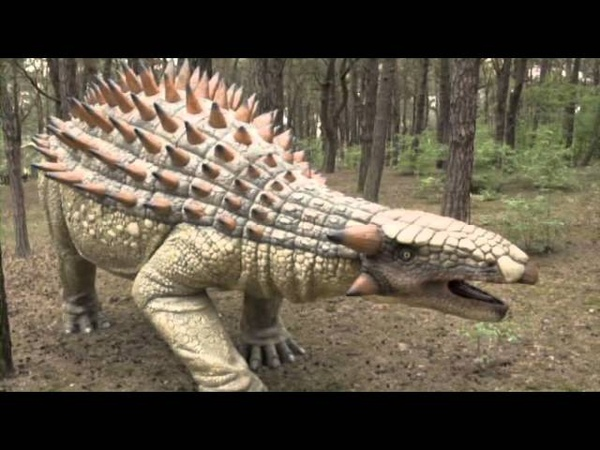 Dragones.O.Dinosaurios.Creación O Evolución.
