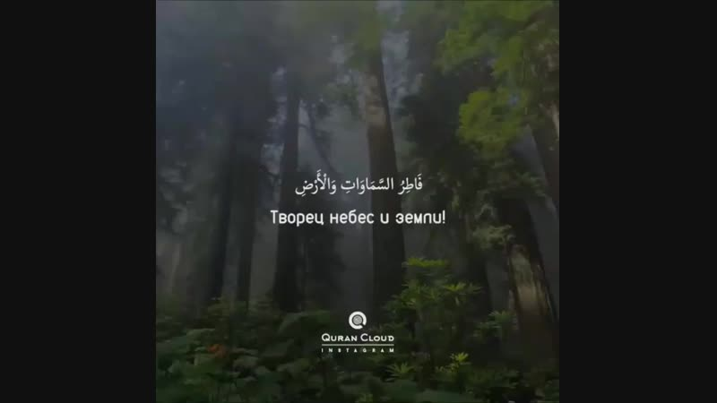 Nikah_suBrIxqxdFSRo.mp4