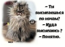 Полина Светикова фото #33