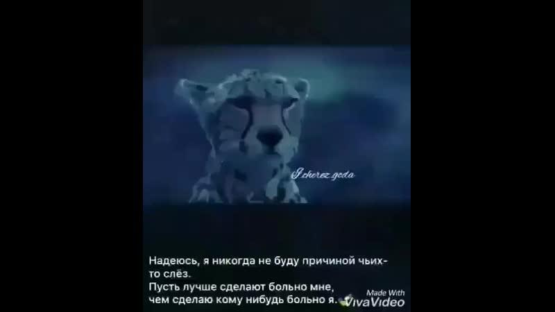 __dlya_dushi_gr__Bz_iJ4ioT0X.mp4
