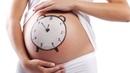 Подготовка к родам. Видео курс