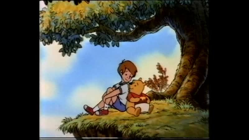 Новые приключения Винни-Пуха. Настоящий герой (VHS, Видеосервис)