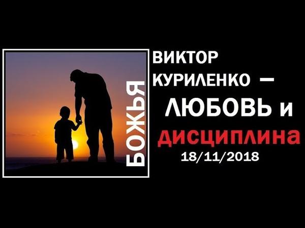 Виктор Куриленко Любовь и дисциплина 18 11 2018