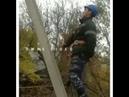 Электрик из таласа поднимается на столб походкой Макгрегора