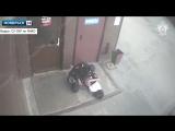 В Ноябрьске молодая женщина предстанет перед судом за драку с полицейским