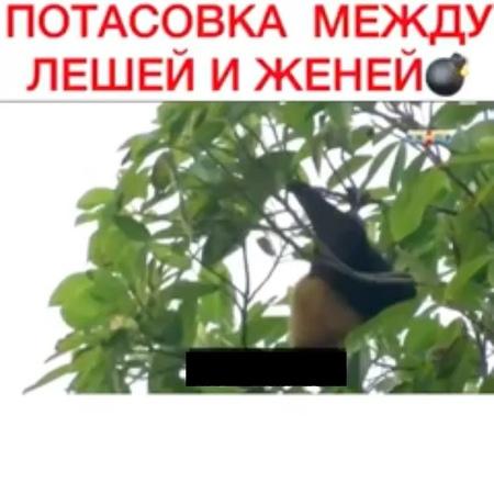 """Алексей Безус on Instagram """"Кто верит этому хлюпику!"""""""