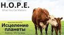 Исцеление планеты Важно что ты ешь фильм H O P E What You Eat Matters на русском