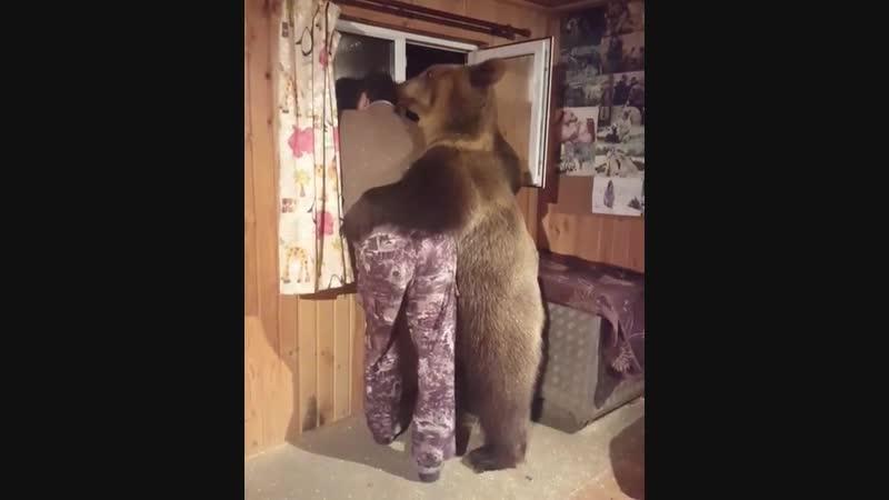 дрессировщик с медведем