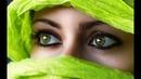 Когда смотришь в родные глаза Майский Жук
