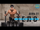 Strength of Body. Майк Васкес. Заключительная тренировка программы. Тренировка плеч и гибридный тренинг - ДЕНЬ 27