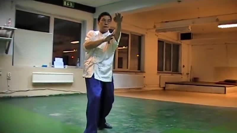 SiFu Donald Mak preforms the Biu Jee short form