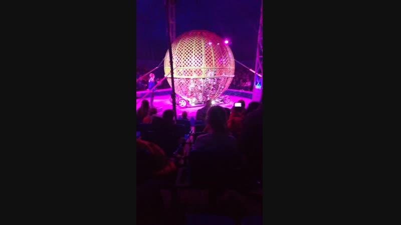 Цирк империал в Камышине