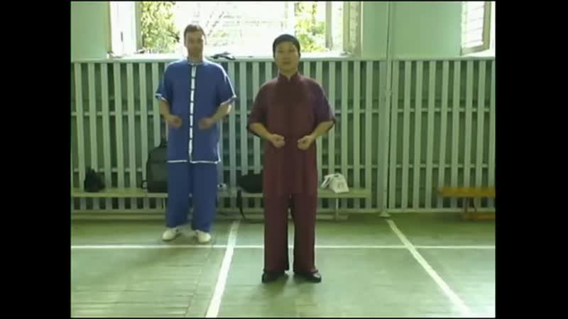 Шень Чжи. 2008. Цигун Дамо Ицзинь Цзин