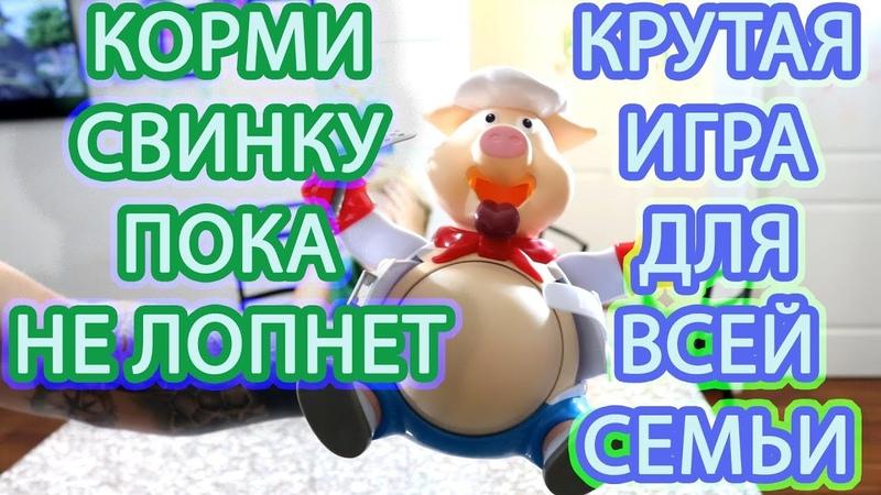 Кормим Свинку пока не лопнет )