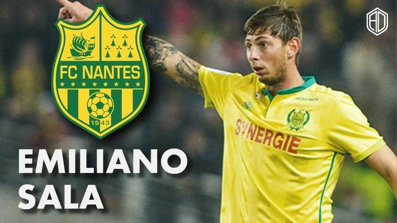 Emiliano Sala ● Goals, Skills Assists ● Nantes ● 201516 ● HD