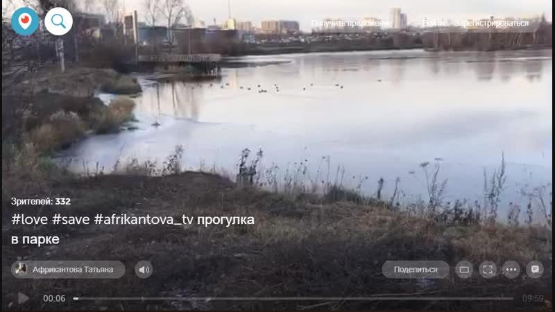 13/11/2018 ПЕРИСКОП 1 серия прогулка в парке