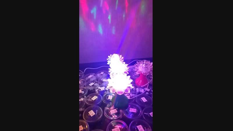 Светильник-проектор наличие